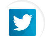 Twitter Plugin WordPress